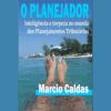 """O Planejador: Inteligência e Torpeza no """"mundo"""" dos Planejamentos Tributários"""